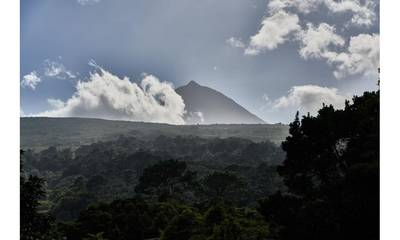 Natuurhuisje in São roque do pico