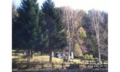 Natuurhuisje in Valtournenche