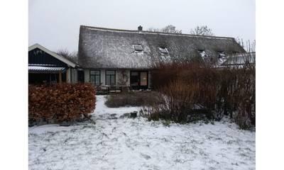 Natuurhuisje in Oosterend, texel