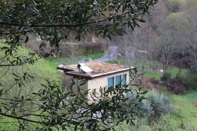 Natuurhuisje in Arcos de valdevez