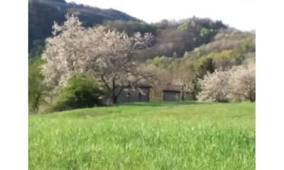 Natuurhuisje in Piana dei castagni