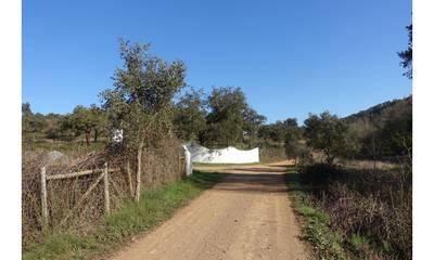 Natuurhuisje in Odemira