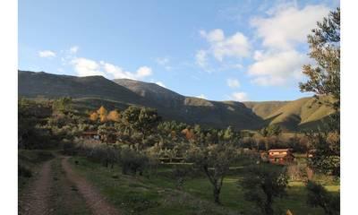 Natuurhuisje in Acebo
