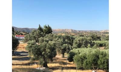 Natuurhuisje in Sivas