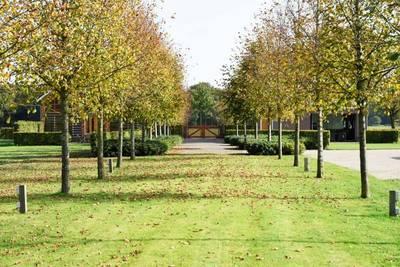 Natuurhuisje in Udenhout
