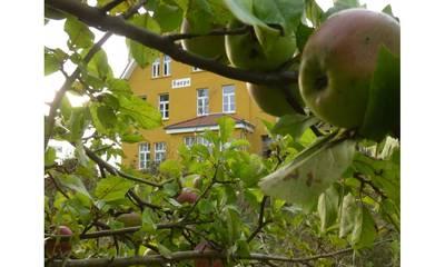 Natuurhuisje in Arendsee