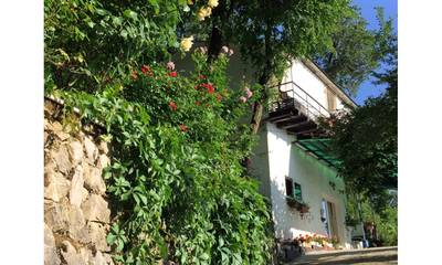 Natuurhuisje in San dorligo della valle