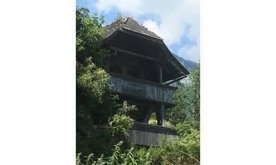 Natuurhuisje in Goldswil