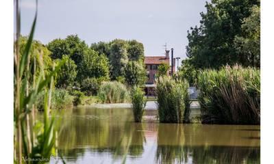 Natuurhuisje in San stino di livenza