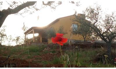 Natuurhuisje in Tó, mogadouro