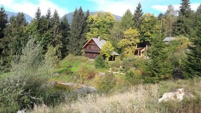 Natuurhuisje in Bad mitterndorf