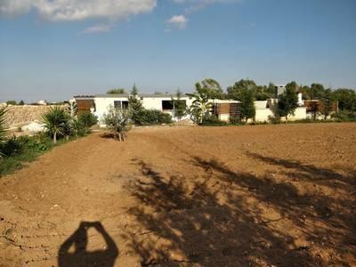 Natuurhuisje in Siggiewi