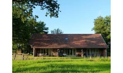 Natuurhuisje in Geesteren