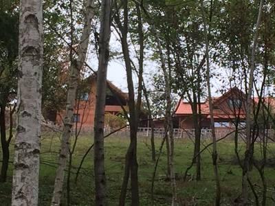 Natuurhuisje in Sinteu