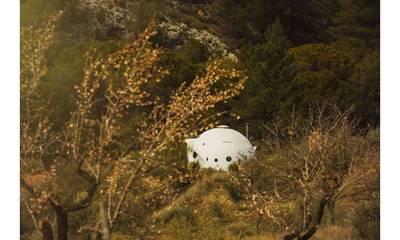 Natuurhuisje in Molinicos