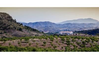 Natuurhuisje in Lorca la parroquia