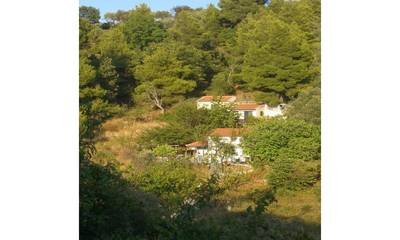 Natuurhuisje in Skopelos