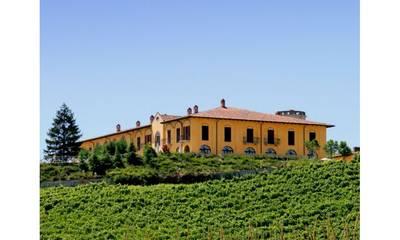 Natuurhuisje in Nizza monferrato