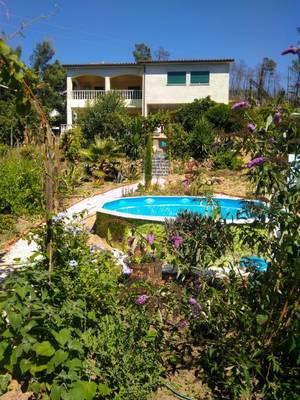 Natuurhuisje in Figueiro dos vinhos