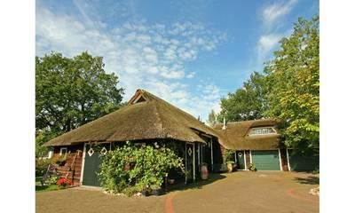 Natuurhuisje in Hardenberg