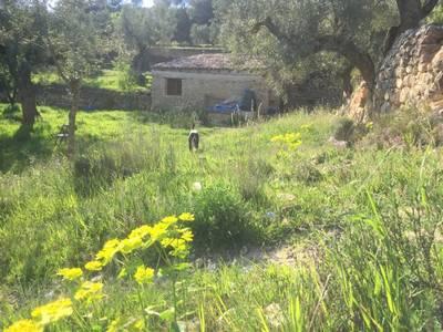 Natuurhuisje in Lledo