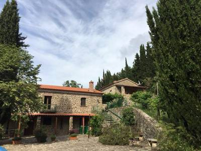 Natuurhuisje in Ogliastro cilento