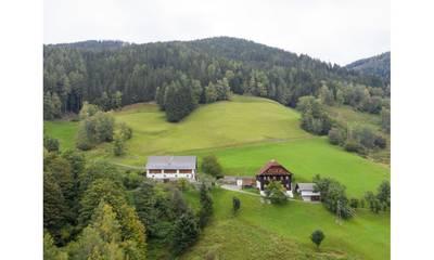Natuurhuisje in Eisentratten (krems in kärnten)