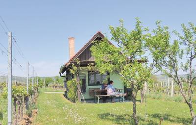 Vakantiehuis In Deutsch-Schützen