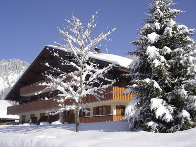 Appartement Résidences Châtel studio - 2-4 personen