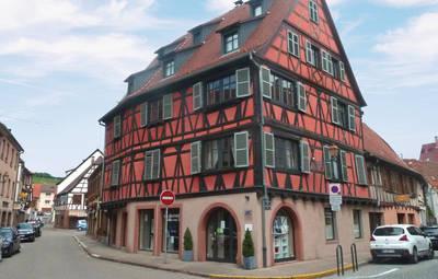 Vakantiehuis In Molsheim