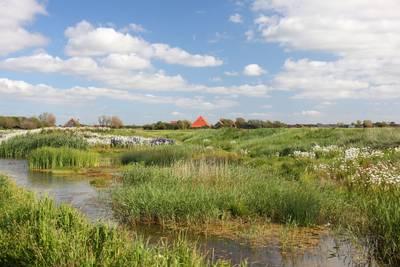 Vakantiepark Callassande in Groote Keete - Callantsoog - Noord-Holland, Nederland foto 9931