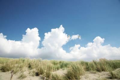 Resort Duynzicht in Julianadorp - Noord-Holland, Nederland foto 9981